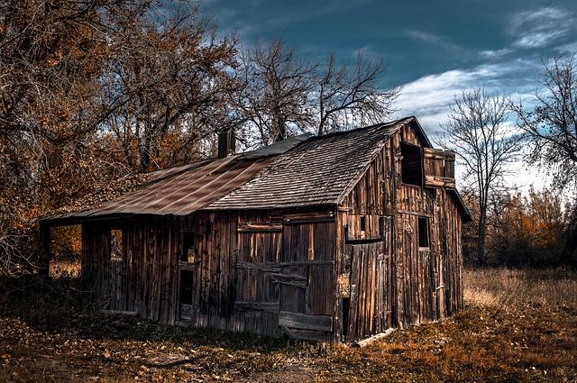 Boxelder, Autumn, Fall, Rural, Farm - Free image - 216372
