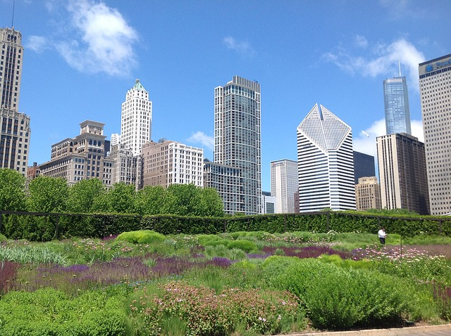 Chicago, Garden, Urban, Skyscrapers - Free image - 170129